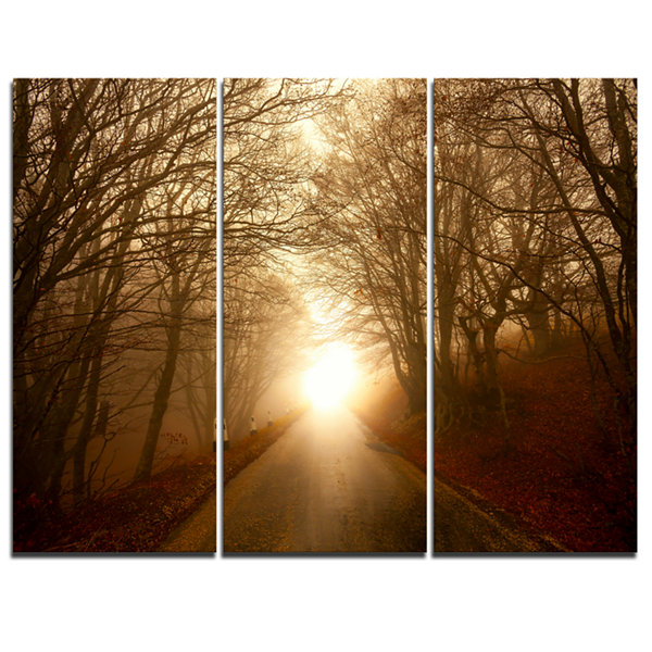 Design Art Path To Sunlight In Autumn Forest Landscape Photography Canvas Print - 3 Panels