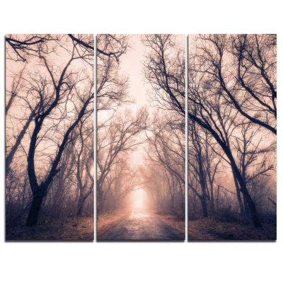 Designart Road Through Mystical Dark Forest Landscape Photography Canvas Print - 3 Panels