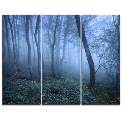 Designart Trail Through Blue Fall Forest LandscapePhoto Canvas Art Print - 3 Panels