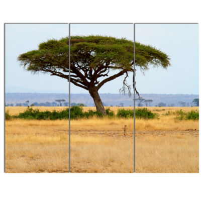 Designart Acadia Tree And Cheetah In Africa Landscape Canvas Art - 3 Panels