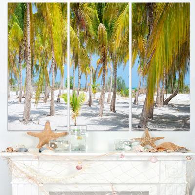 Designart Palm Trees Landscape Photography CanvasArt Print - 3 Panels