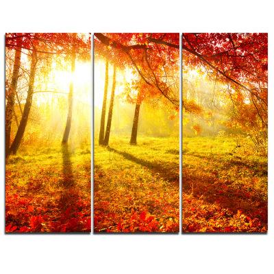 Designart Autumnal Park Landscape Photography Canvas Art Print - 3 Panels