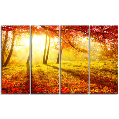 Designart Autumnal Park Landscape Photography Canvas Art Print - 4 Panels