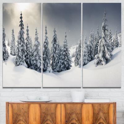 Designart Winter Landscape Photography Canvas ArtPrint - 3 Panels