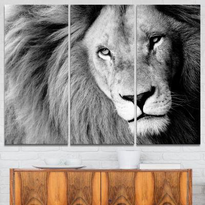 Design Art Lion Head In Grey Animal Canvas Art Print - 3 Panels