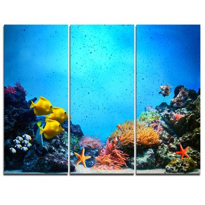Designart Underwater Scene Seascape Photography Canvas Art Print - 3 Panels