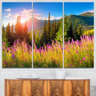 Designart Mountains With Pink Flowers Canvas ArtPrint - 3 Panels