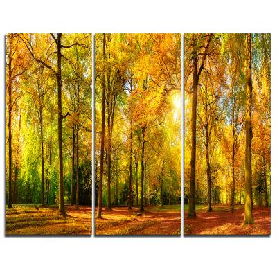 Design Art Gorgeous Autumn Of Sunny Forest Landscape Photography Canvas Print - 3 Panels