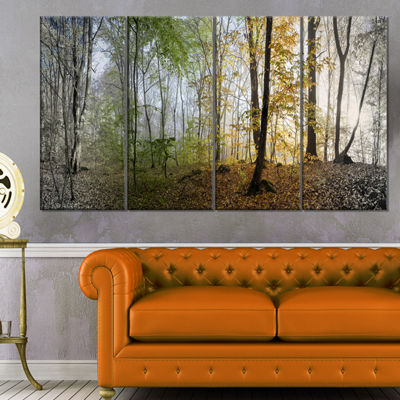Designart Morning Forest Panoramic View LandscapePhotography Canvas Print - 4 Panels