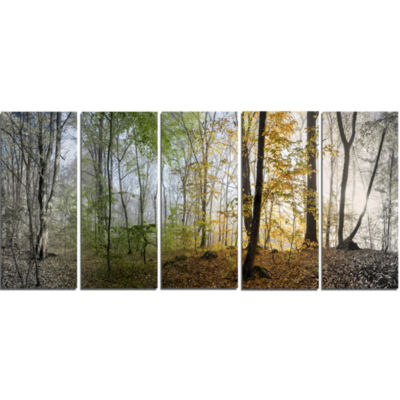 Designart Morning Forest Panoramic View LandscapePhotography Canvas Print - 5 Panels