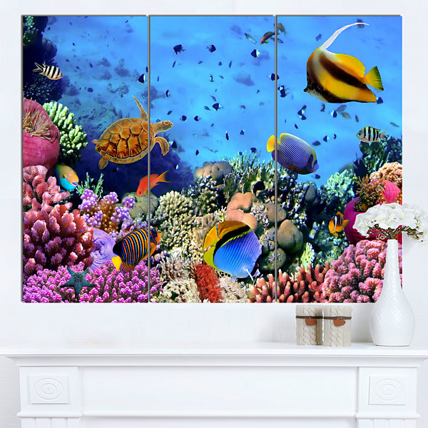 Designart Coral Colony On Reef Egypt Animal WallArt - 3 Panels