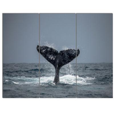 Designart Humpback Whale Tail Animal Wall Art - 3Panels