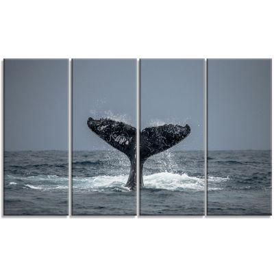 Designart Humpback Whale Tail Animal Wall Art - 4Panels