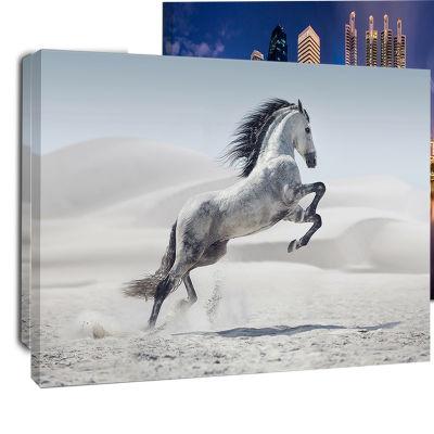 Designart Galloping White Horse Animal Canvas WallArt