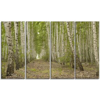 Designart Dense Birch Grove In Summer Day Forest Canvas Art Print - 4 Panels