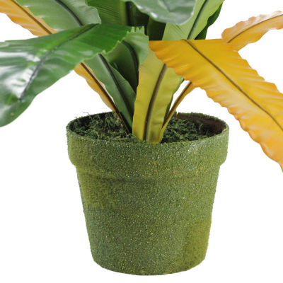 "22"" Decorative Potted Artificial Green and Brown Bird Nest Fern Plant"""