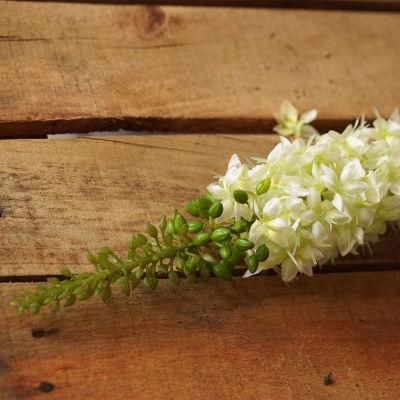 "37"" Artificial Foxtail Decorative Floral CraftingStem"""