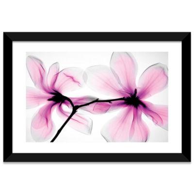 Magnolias II by Hong Pham Black Framed Fine Art Paper Print