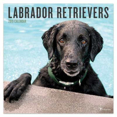 Tf Publishing 2019 Labrador Retrievers Wall Calendar