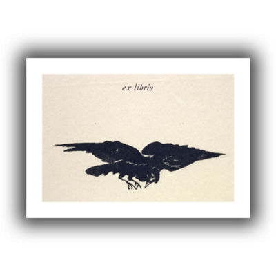 Brushstone Le Corbeau (The Raven) Canvas Wall Art
