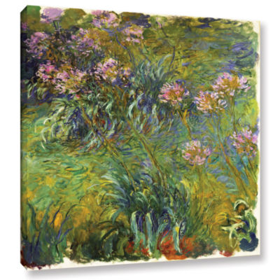 Brushstone Agapanthus; 1914-26 Gallery Wrapped Canvas Wall Art