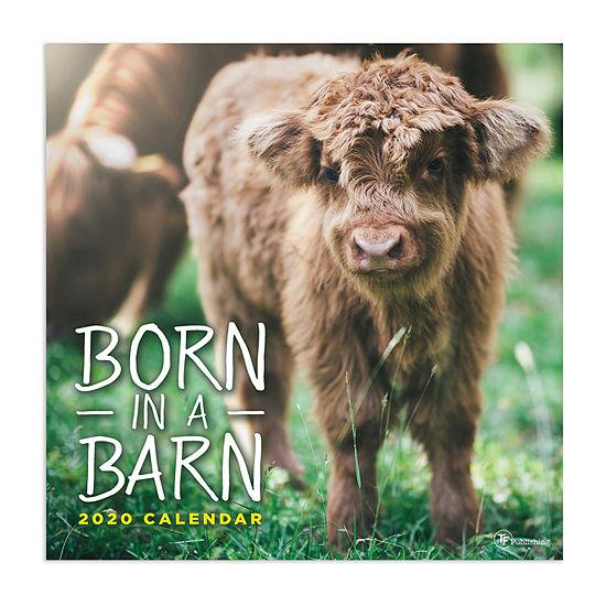Tf Publishing 2020 Born In A Barn Wall Calendar
