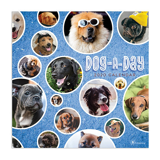 Tf Publishing 2020 Dog-A-Day Wall Calendar