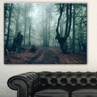 Designart Dark Forest And Dark Trees Landscape Photography Canvas Print
