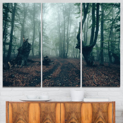 Designart Dark Forest And Dark Trees Landscape Photography Canvas Print - 3 Panels