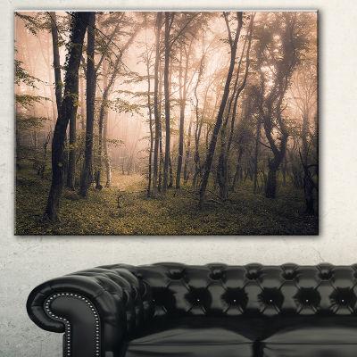 Designart Dark Old Spring Forest Landscape Photography Canvas Print - 3 Panels