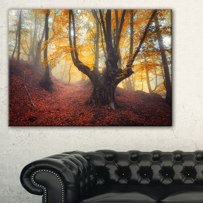 Design Art Dark Old Yellow Forest Landscape Photography Canvas Print - 3 Panels