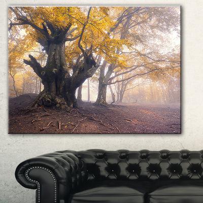 Designart Dark Tree With Yellow Leaves LandscapePhotography Canvas Print - 3 Panels
