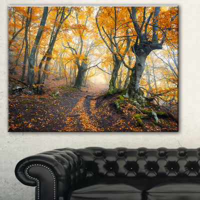 Designart Dark Yellow Old Forest In Fog LandscapePhotography Canvas Print