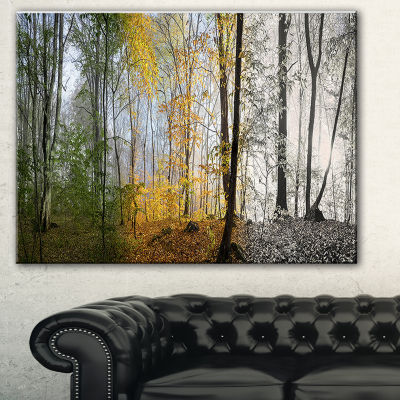 Designart Forest In Early Morning Landscape Photography Canvas Print