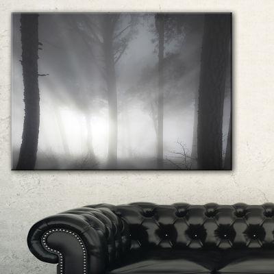 Designart Forest In Heavy Autumn Mist Landscape Photo Canvas Art Print