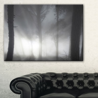 Designart Forest In Heavy Autumn Mist Landscape Photo Canvas Art Print - 3 Panels