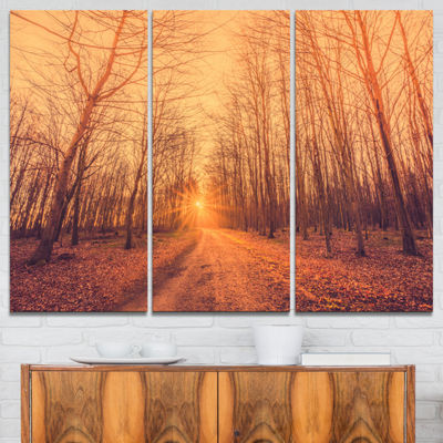 Designart Forest Road Into Sunrise Landscape Photography Canvas Art Print - 3 Panels