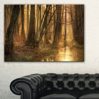 Designart Golden Morning In Dense Forest LandscapePhotography Canvas Print