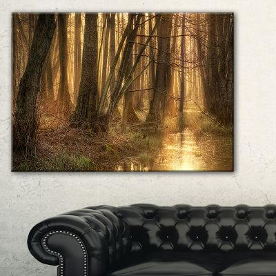 Design Art Golden Morning In Dense Forest LandscapePhotography Canvas Print - 3 Panels