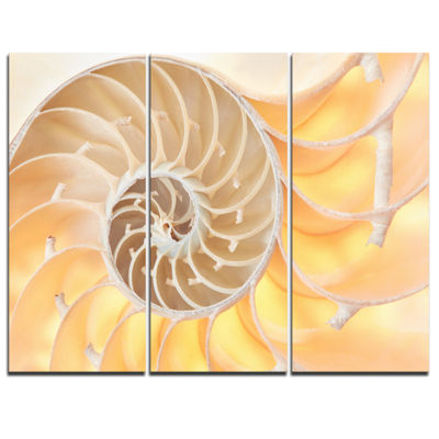 Designart Golden Nautilus Shell Pattern AbstractCanvas Art Print - 3 Panels