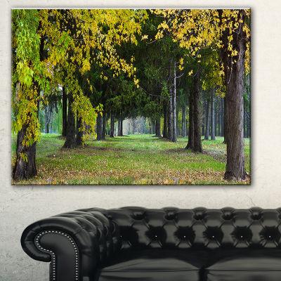 Design Art Green Park In Autumn Landscape Photography Canvas Print - 3 Panels