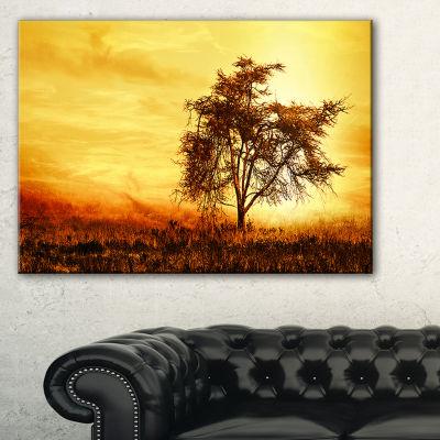 Designart African Tree Silhouette Landscape PhotoCanvas Art Print - 3 Panels