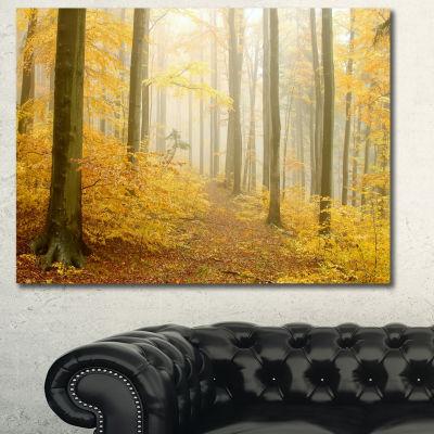 Designart Autumn Beach Forest Yellow Landscape Photography Canvas Print