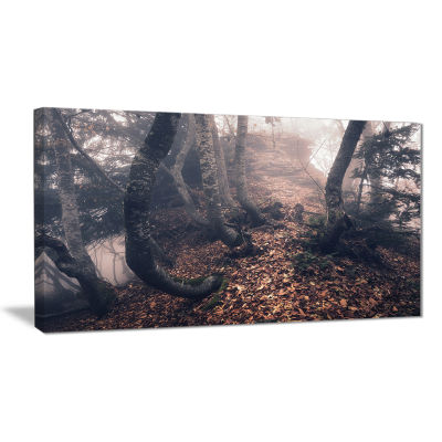 Designart Autumn Foggy Forest Trees Landscape Photography Canvas Print