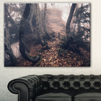 Designart Autumn Foggy Forest Trees Landscape Photography Canvas Print - 3 Panels