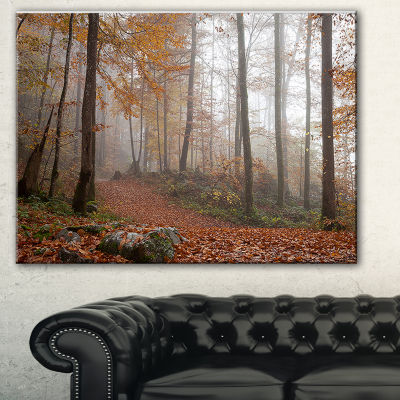 Designart Autumn Forest In Germany Landscape Photography Canvas Print - 3 Panels
