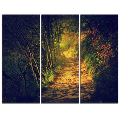 Designart Autumn Forest Path In Sunshine LandscapePhotography Canvas Print - 3 Panels
