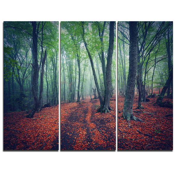 Design Art Beautiful Green Autumn Forest LandscapePhotography Canvas Print - 3 Panels