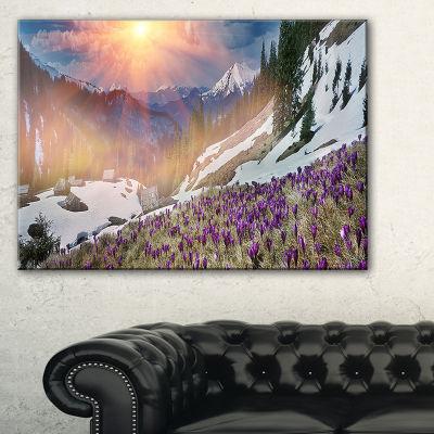 Designart Crocus Flowers In Carpathians LandscapePhotography Canvas Print - 3 Panels