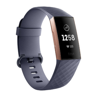 Fitbit Charge 3 Unisex Blue Smart Watch-Fb409rggy